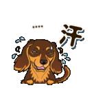 気軽にダックス(チョコタン)【カスタム】(個別スタンプ:29)