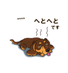 気軽にダックス(チョコタン)【カスタム】(個別スタンプ:31)
