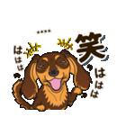 気軽にダックス(チョコタン)【カスタム】(個別スタンプ:33)