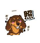 気軽にダックス(チョコタン)【カスタム】(個別スタンプ:34)