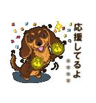 気軽にダックス(チョコタン)【カスタム】(個別スタンプ:38)