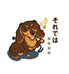 気軽にダックス(チョコタン)【カスタム】(個別スタンプ:39)