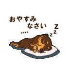 気軽にダックス(チョコタン)【カスタム】(個別スタンプ:40)