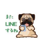 Pug パグ 普段使い(REMAKE)(個別スタンプ:04)