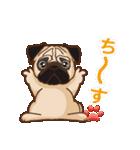 Pug パグ 普段使い(REMAKE)(個別スタンプ:05)