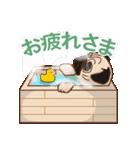 Pug パグ 普段使い(REMAKE)(個別スタンプ:10)
