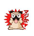 Pug パグ 普段使い(REMAKE)(個別スタンプ:13)