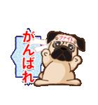 Pug パグ 普段使い(REMAKE)(個別スタンプ:17)