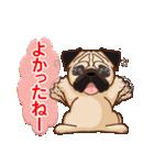 Pug パグ 普段使い(REMAKE)(個別スタンプ:22)