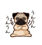 Pug パグ 普段使い(REMAKE)(個別スタンプ:24)