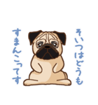 Pug パグ 普段使い(REMAKE)(個別スタンプ:26)