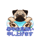 Pug パグ 普段使い(REMAKE)(個別スタンプ:36)