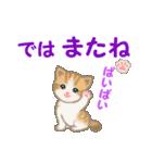 ちび猫5 毎日優しいスタンプ(個別スタンプ:3)