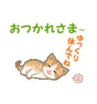 ちび猫5 毎日優しいスタンプ(個別スタンプ:6)