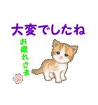 ちび猫5 毎日優しいスタンプ(個別スタンプ:8)