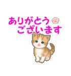 ちび猫5 毎日優しいスタンプ(個別スタンプ:13)