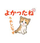 ちび猫5 毎日優しいスタンプ(個別スタンプ:18)
