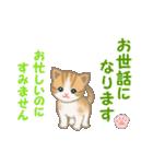ちび猫5 毎日優しいスタンプ(個別スタンプ:21)