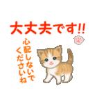 ちび猫5 毎日優しいスタンプ(個別スタンプ:25)
