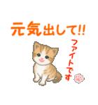 ちび猫5 毎日優しいスタンプ(個別スタンプ:27)