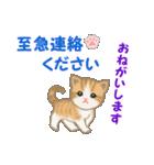 ちび猫5 毎日優しいスタンプ(個別スタンプ:33)