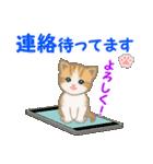 ちび猫5 毎日優しいスタンプ(個別スタンプ:34)