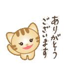 マルっとにゃんこ(個別スタンプ:2)