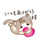 マルっとにゃんこ(個別スタンプ:3)