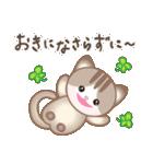 マルっとにゃんこ(個別スタンプ:20)