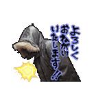 フライトジャケットーズ 2(個別スタンプ:9)