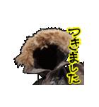 フライトジャケットーズ 2(個別スタンプ:24)