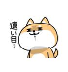 毒しば~かわいい顔して毒舌な柴犬~(個別スタンプ:16)