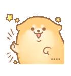 むっちりポメラニアン☆オレンジ☆カスタム(個別スタンプ:05)
