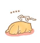 むっちりポメラニアン☆オレンジ☆カスタム(個別スタンプ:21)