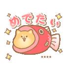 むっちりポメラニアン☆オレンジ☆カスタム(個別スタンプ:35)