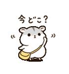 ぽちゃハムちゃん(個別スタンプ:17)