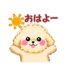 かわいい♥トイプードル(個別スタンプ:01)