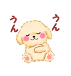 かわいい♥トイプードル(個別スタンプ:10)