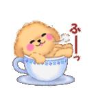 かわいい♥トイプードル(個別スタンプ:34)