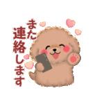 かわいい♥トイプードル(個別スタンプ:38)