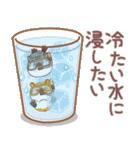 夏のハムギャング (日本語)(個別スタンプ:13)
