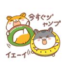夏のハムギャング (日本語)(個別スタンプ:25)