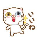 マニ白猫は2色の目をしています(個別スタンプ:6)