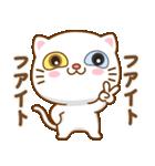 マニ白猫は2色の目をしています(個別スタンプ:12)