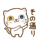 マニ白猫は2色の目をしています(個別スタンプ:29)