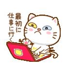 マニ白猫は2色の目をしています(個別スタンプ:36)