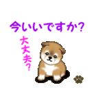 よちよち秋田犬 毎日優しいスタンプ(個別スタンプ:2)