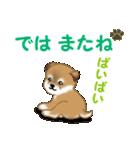 よちよち秋田犬 毎日優しいスタンプ(個別スタンプ:3)