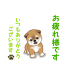 よちよち秋田犬 毎日優しいスタンプ(個別スタンプ:5)