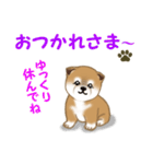 よちよち秋田犬 毎日優しいスタンプ(個別スタンプ:6)
